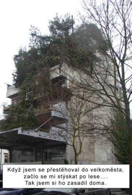 Lochneska - 2. místo cena veřejnosti
